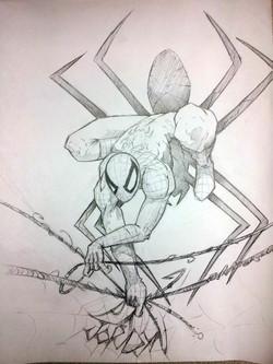 Spiderman_RPILLUSRATION