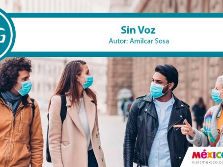 """""""Sin Voz"""""""