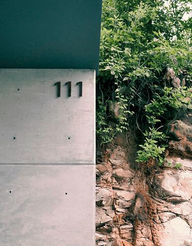 111-1.jpg