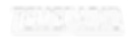 temrario logo blanco.png