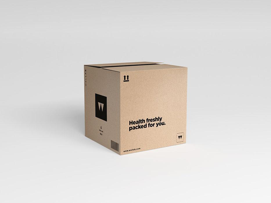 caja wellab.jpg