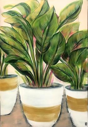 pot plants 2 sm.jpg