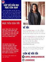 (Vietnamese) College Adviser-1.jpg