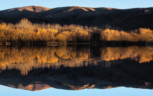 Relections, Reflecting, Reflect