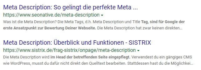 Beispiel Meta-Description Blog-SEO