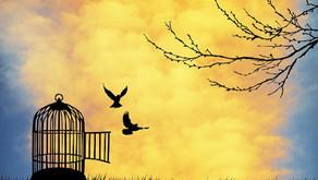 Ayrılığın Gazeli Yankılanıyor Şavk İçinde