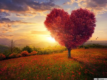 Yaşamı Yolluyor Sana Dost, Açıp Kalbini Alsana