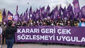 Pederi'den Pederşahi'ye geçiş: İstanbul Sözleşmesi'nin iptali