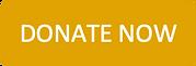 DonateNowButton.png