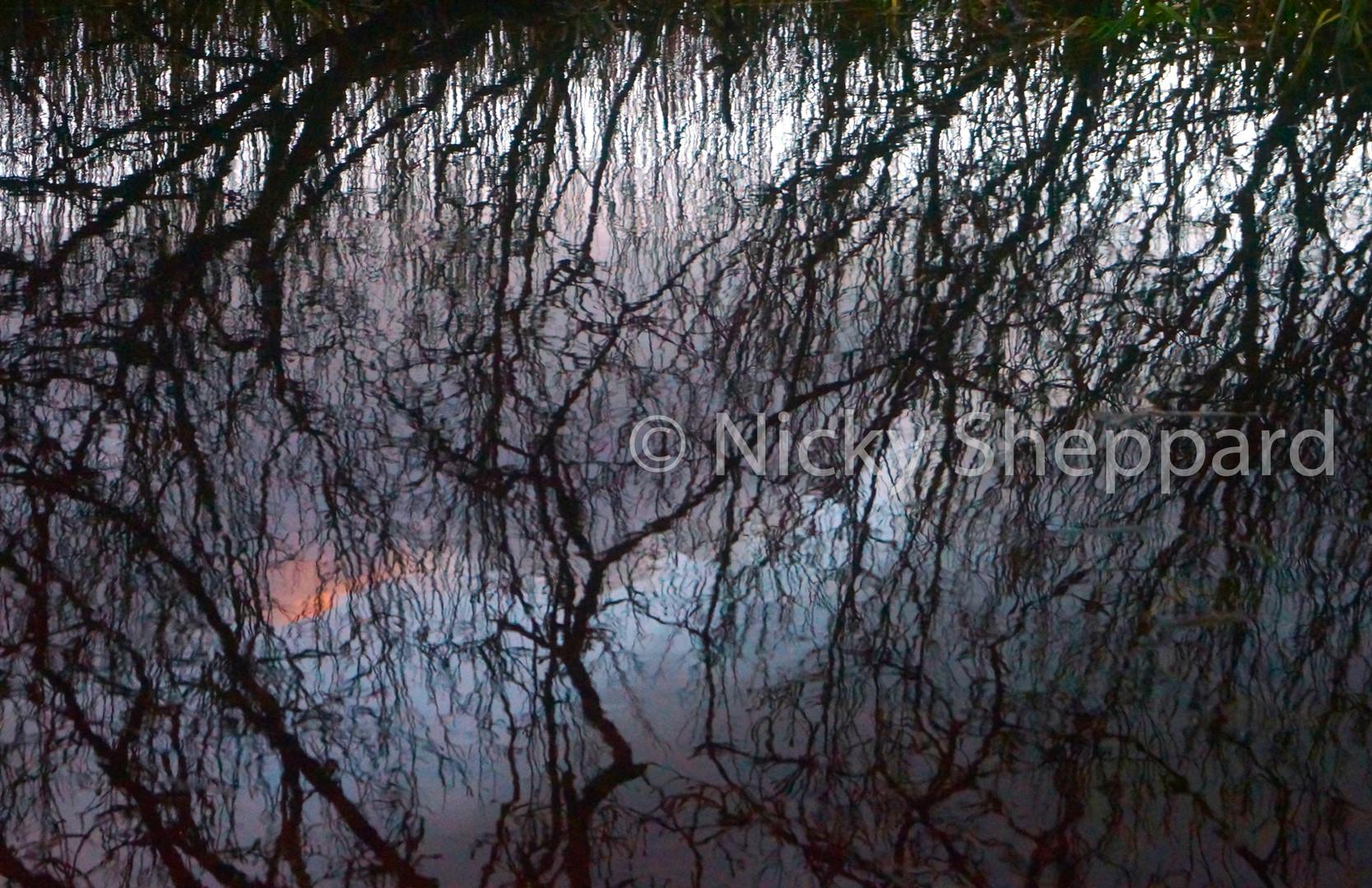 Slapton Ley reflection