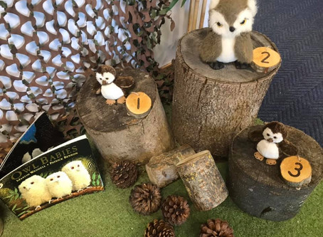 Owl Babies in the Foyer