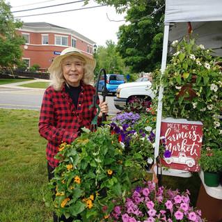 Lynn Hartman at Barre Farmer's Market