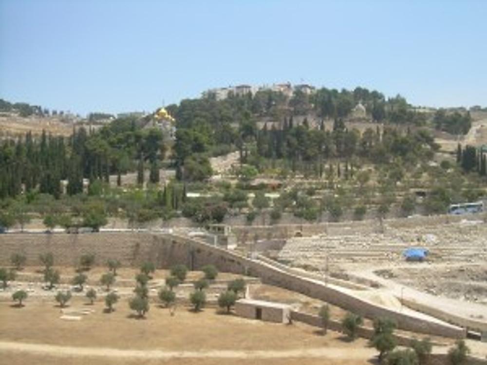 Jerusalem,_Mount_of_olives_3862