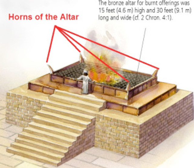 The horns of the altar in Jerusalem had provided a refuge for fugitives. Those who caught hold of the horns of the altar were granted asylum (1 Kings 1:50-53).