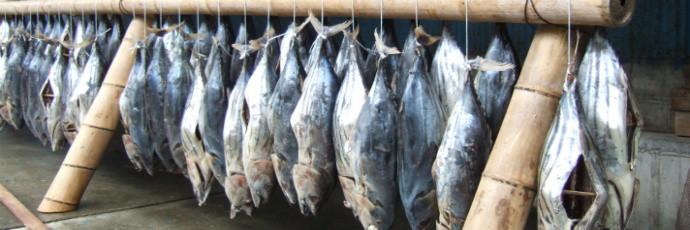 Image result for picture of salt preserving fish