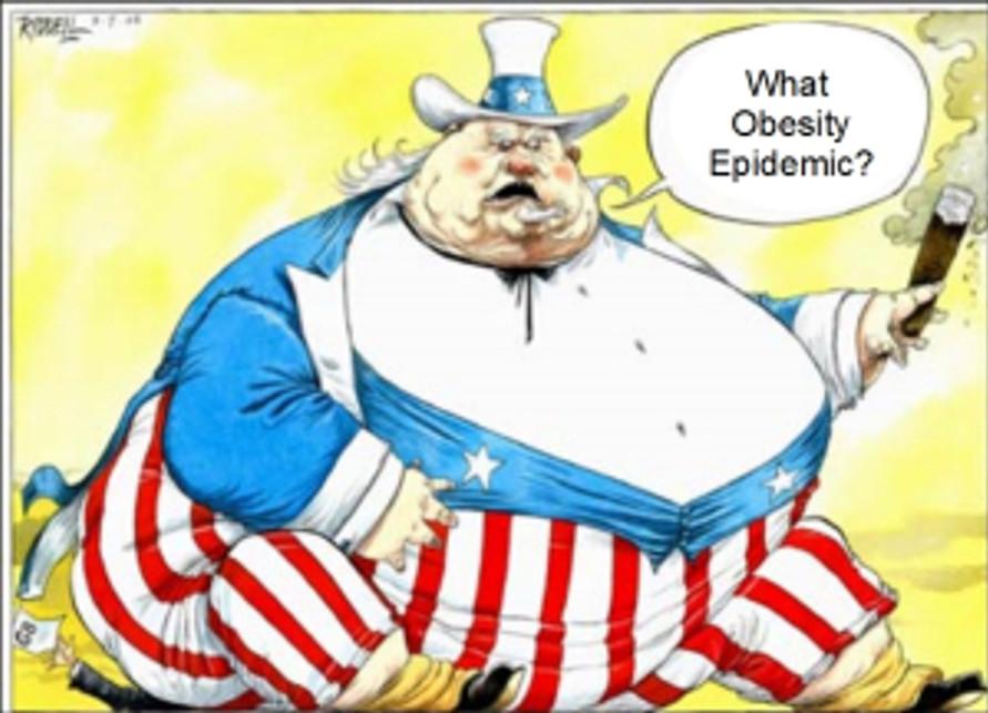 obese sheep