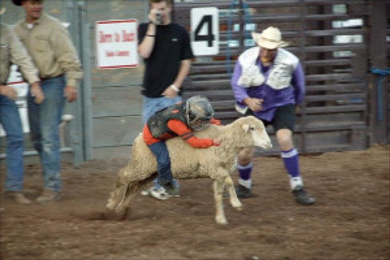 first rodeo