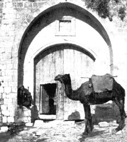 Little door, big camel.