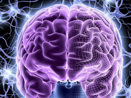 Управление мозгом. Сознание.