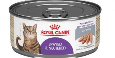 Royal Canin POS Spayed Neut MB Wet Loaf feline lata
