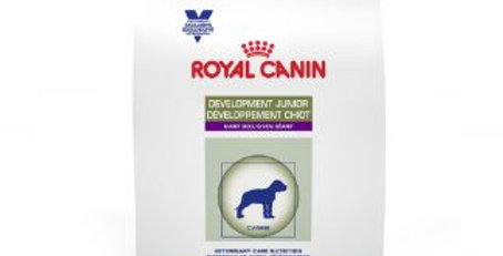 Royal Canin Development Giant Jr dog