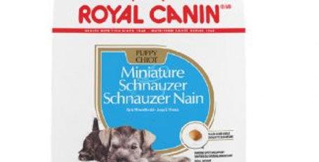 Royal Canin Schnauzer puppy