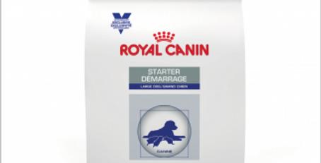 Royal Canin Starter Large Dog