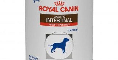Royal Canin Lata Gastrointestinal High Energy