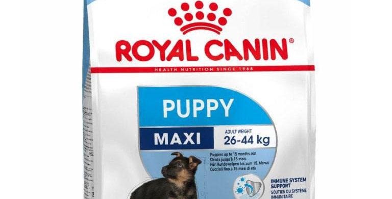 Royal Canin POS Maxi puppy