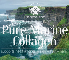 Benesse Collagen- Fountain Of Youth