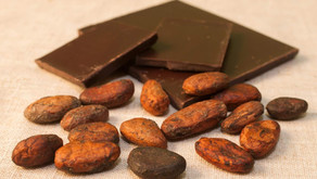 The Benefits of Bean to Bar Chocolate