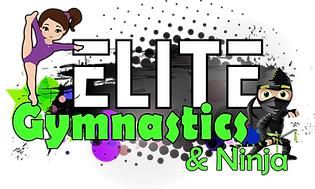 Gymnastics & Ninja Logo.png