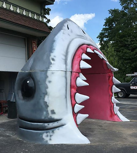 Shark Tooth Cove Jeckyl Island