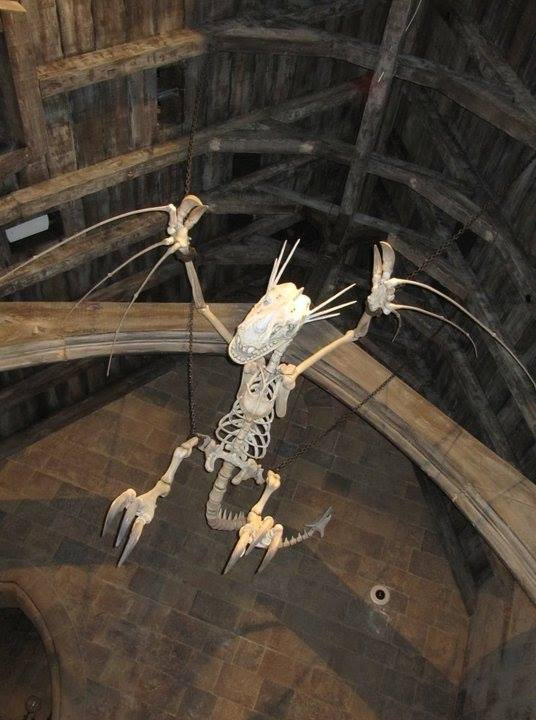 dragon  bones.jpg