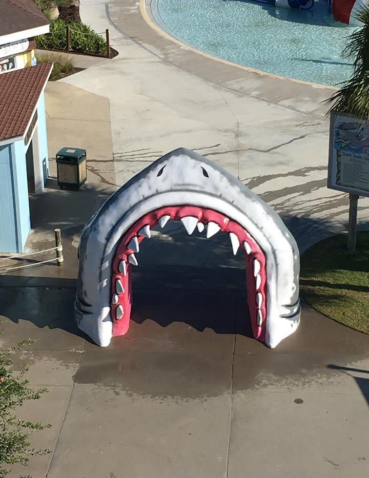 shark e.jpg
