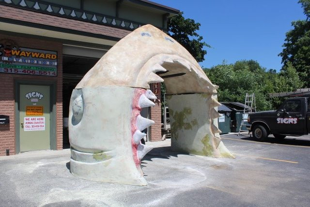 shark 18.jpg