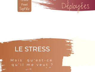 ZOOM SUR LE STRESS