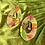 Thumbnail: VERNA -floral/gold