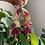 Thumbnail: CARMELITA - berry/gold
