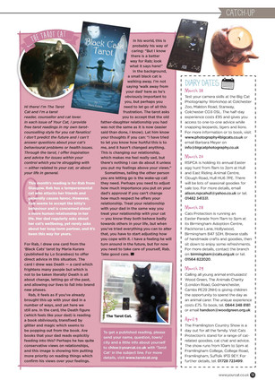 Transliving and Your Cat Columns