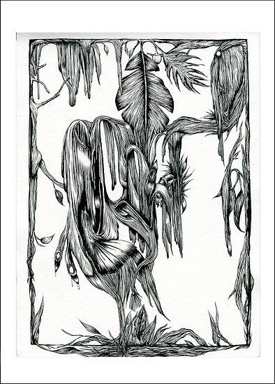 Drawing 1.5
