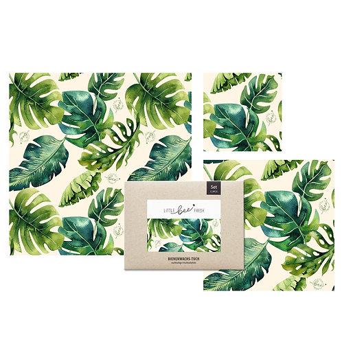 """Bio-Bienenwachstücher Starter-Set (""""L/M/S"""") – Jungle grün"""