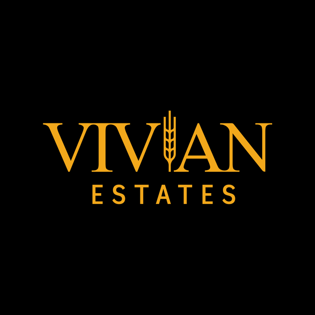 Vivian-3.png