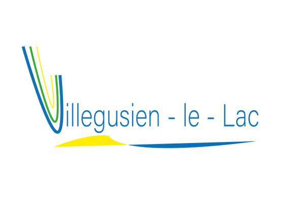 Logo_VFS-2.png
