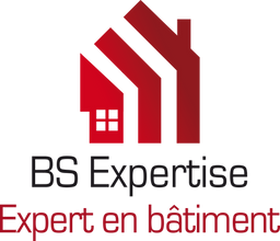 BS EXPERTISE LOGO.png