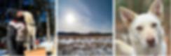 Screen Shot 2020-01-31 at 4.30.53 PM.png
