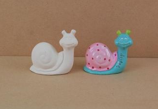 Small Snail gift Pack