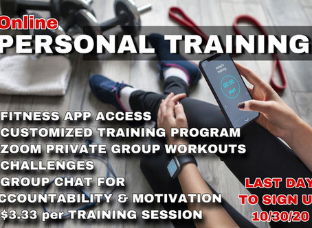 $3.33 per TRAINING SESSION!