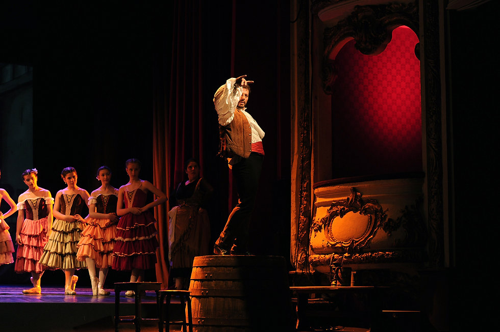 Flamenco 7b.jpg
