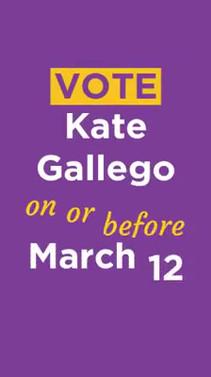 Kate Gallego Instagram Stories Ad